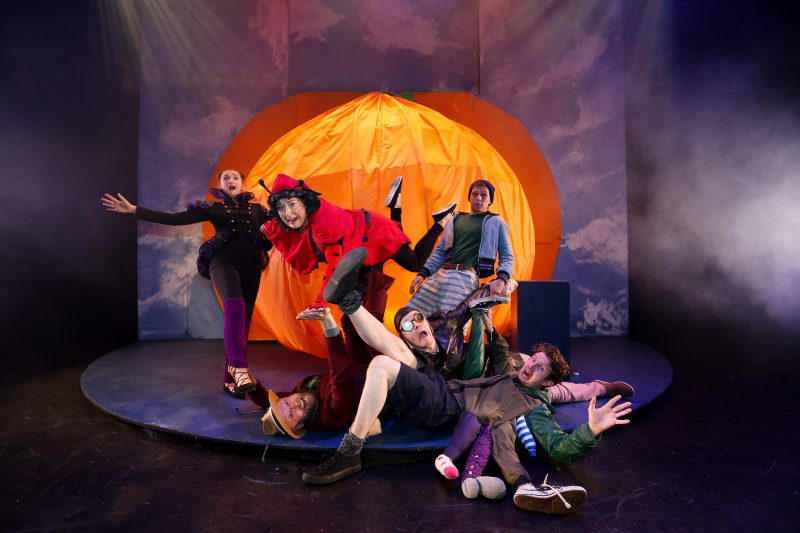 James and the Giant Peach dlr Mill Theatre Dundrum June 2017